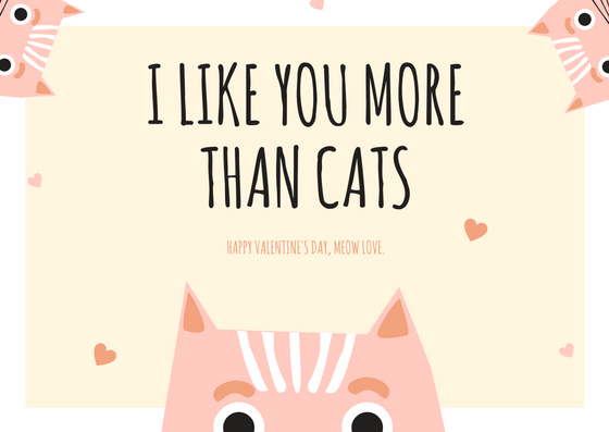 funny valentines day card for the catlover