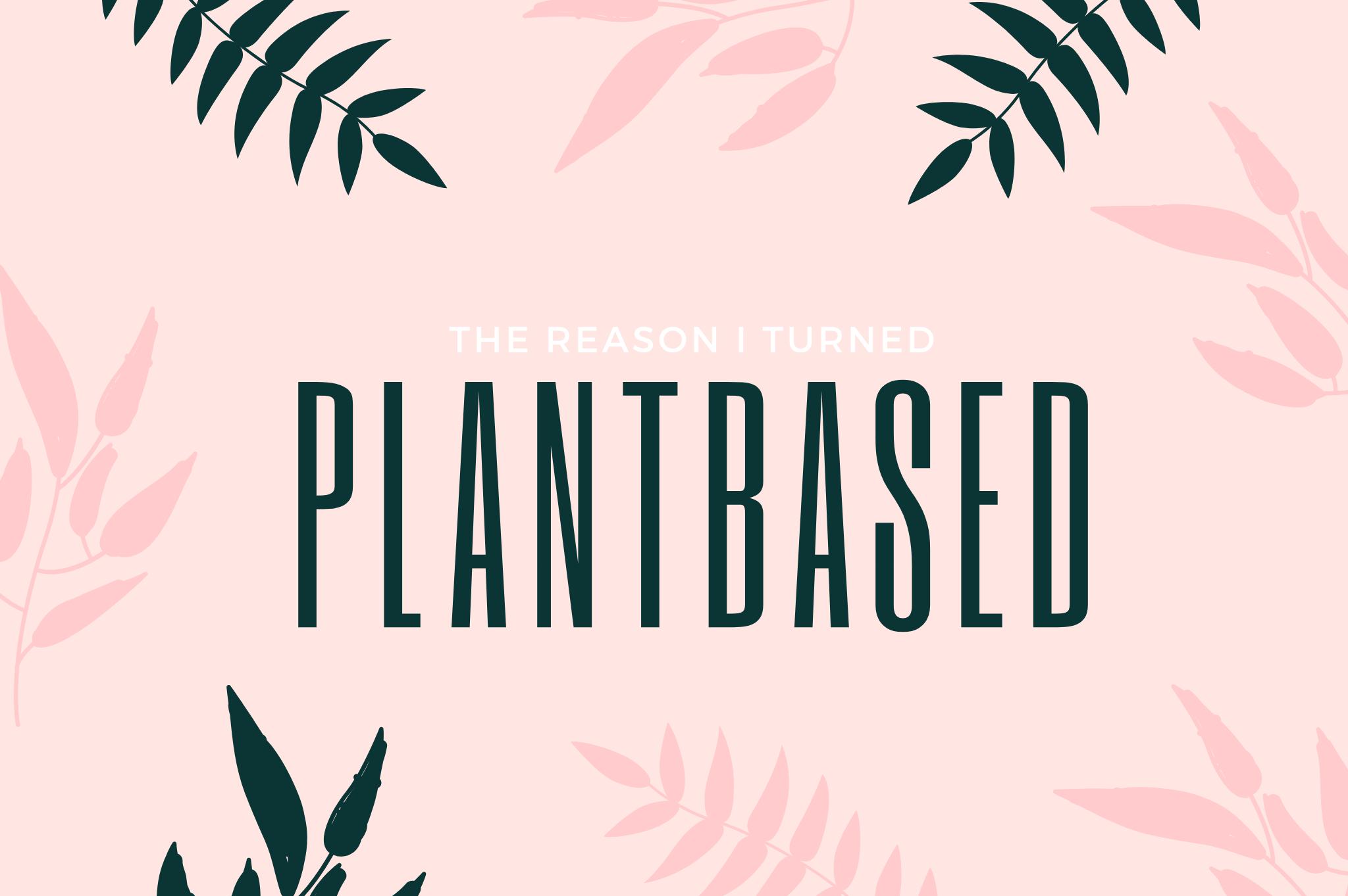 plantbased diet vegan veganism why to go vegan why i went wegan why i went plantbased